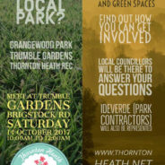Save our parks in Thornton Heath!